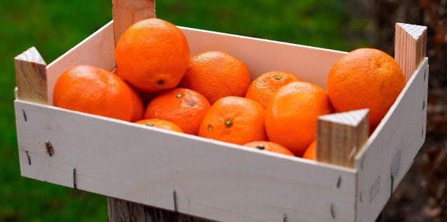 Apfelsinen Kiste